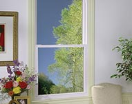 Double Hung Energy Efficient Window