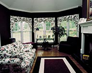Siding, Vinyl Windows & Bowed Windows