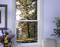Double Hung Vinyl Windows